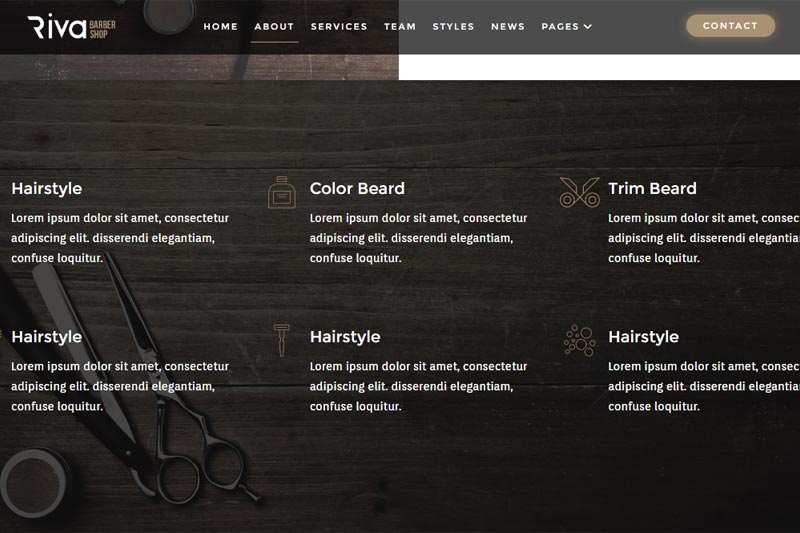 spa web design sample